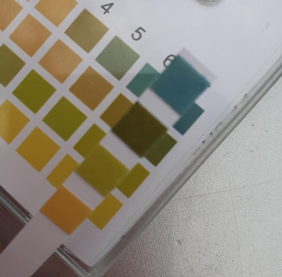 pH-анализ-2020-05-24-#482