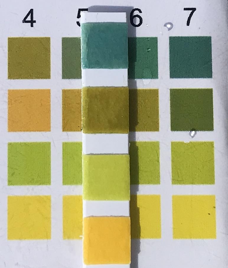 pH-анализ-2019-03-28-#254