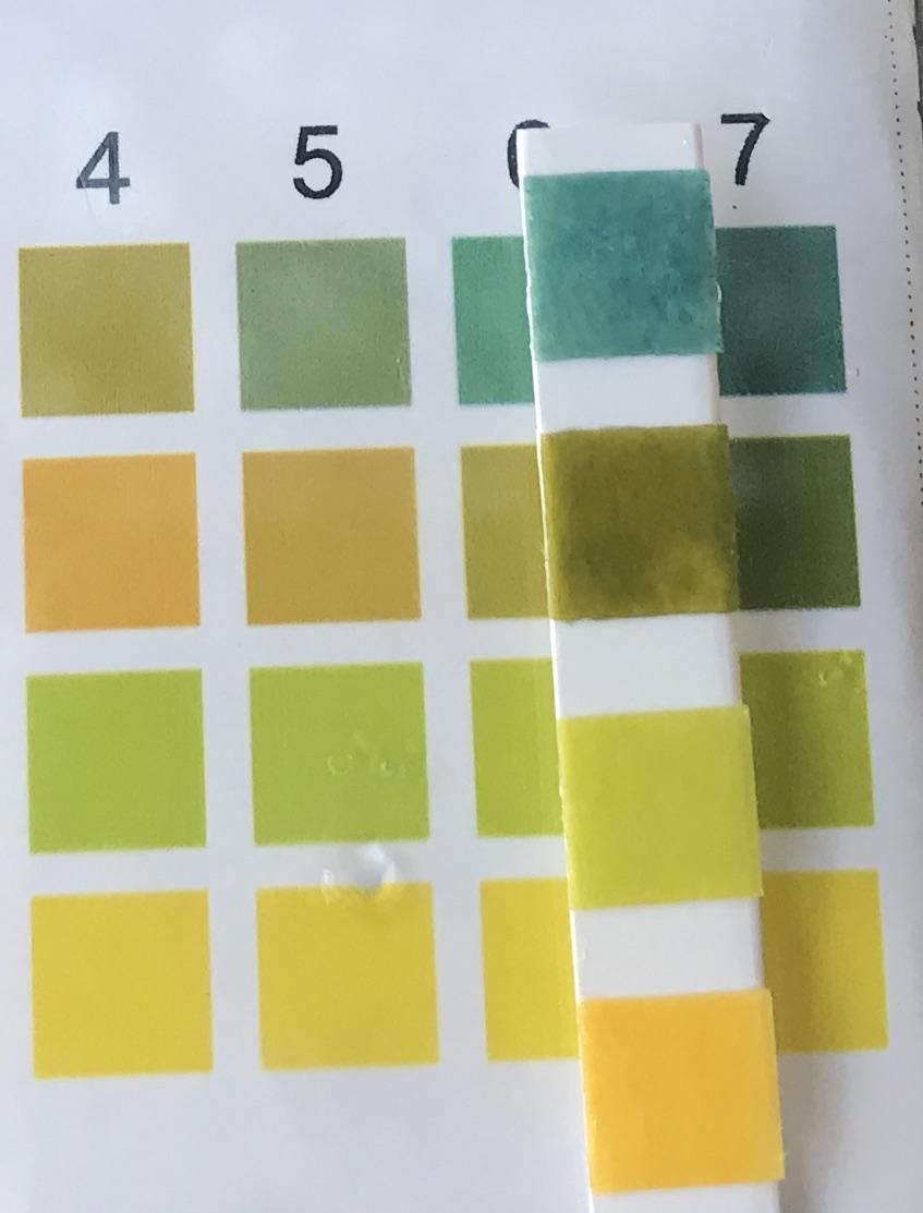pH-анализ-2019-03-28-#273